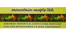 mountain-maple